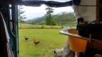 Vita nel Kia: cibo e idee di sopravvivenza