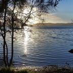 22 km a piedi e un pranzo al lago: Myall Lakes
