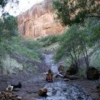 Antiche cascate e vortici sotterranei: Waa Gorge