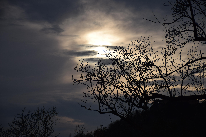 tramonto-colli-bologna